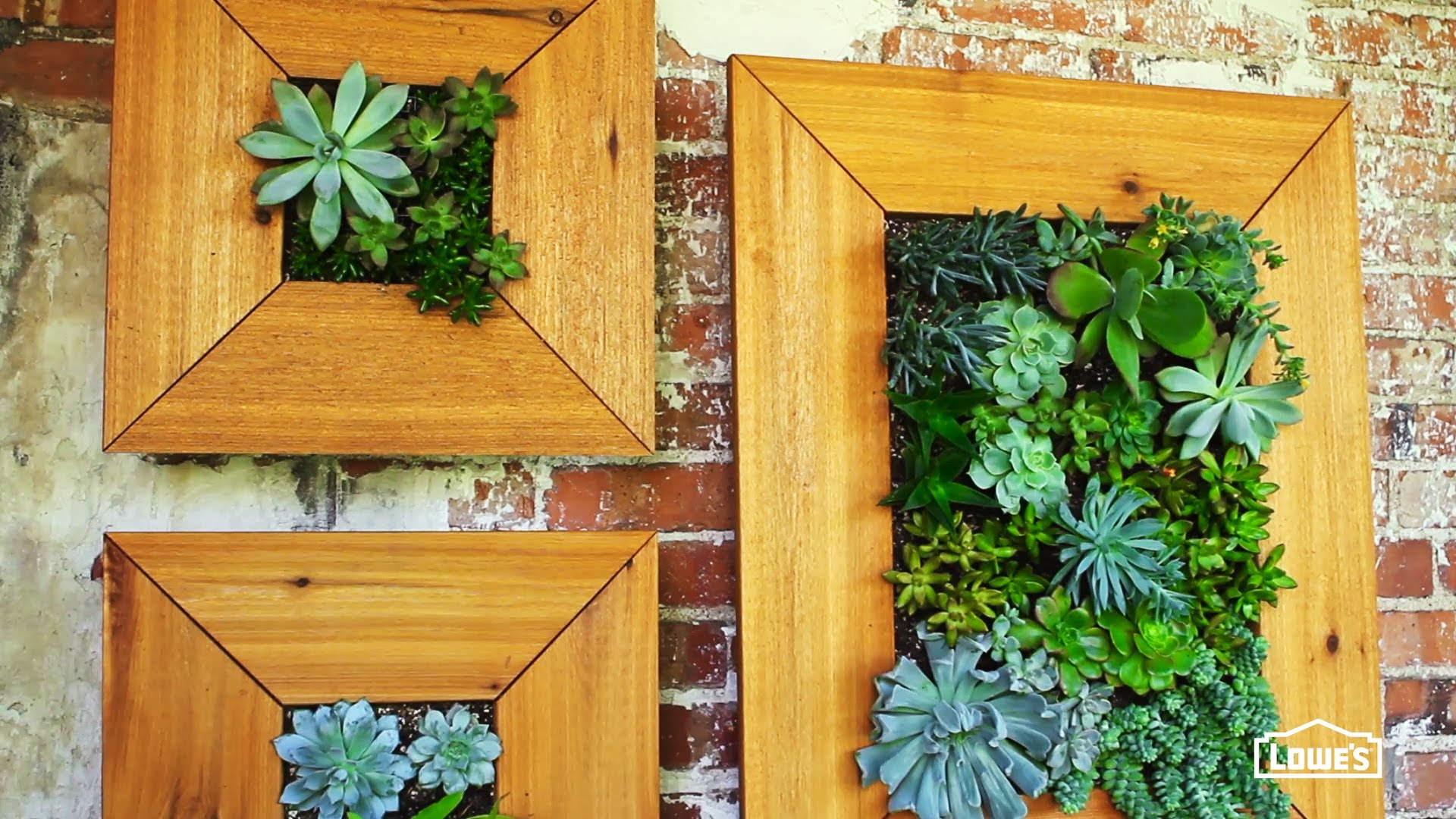 Gorgeous Diy Framed Succulent Planters For Table Or Wall