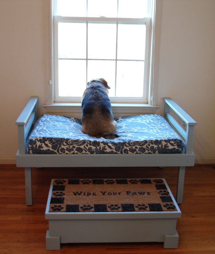 10 Doggone Cute Diy Pallet Dog Beds For Pampered Pooch
