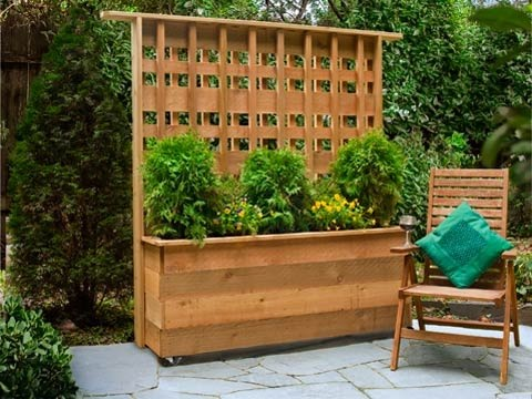 Block that nosey neighbor with a diy privacy planter for Privacy from neighbors ideas