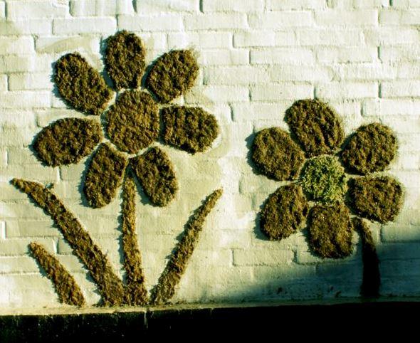 Incredible Live DIY Moss Graffiti Garden Tutorial