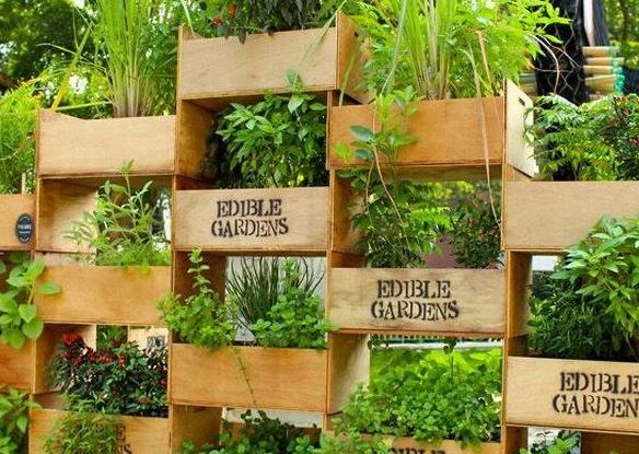 Many People Lack The Yard Space For Growing Gardens And Hanging Vertical  Gardens Are A Great Solutions. These Space Saving Gardens Can Hang  Vertically On ...