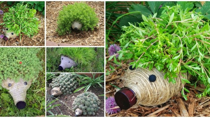 diy hedgehog planter