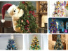 34 decorated christmas trees